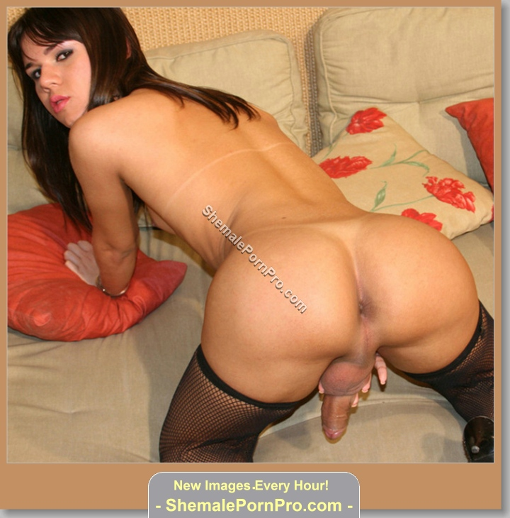 www.shemaleblonde.com - Best Free Shemale Images